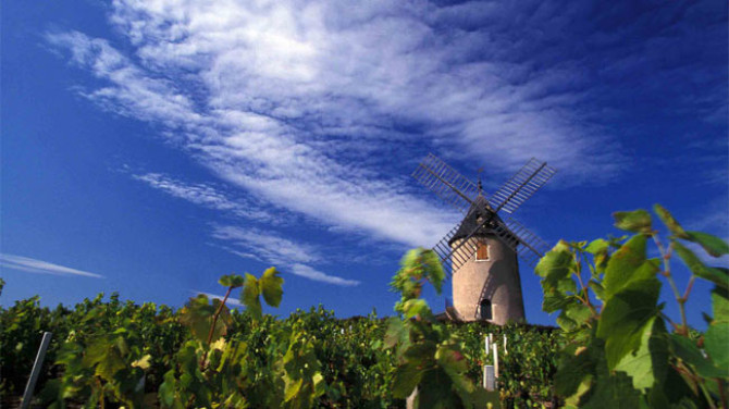 cru-beaujolais-moulin-a-vent