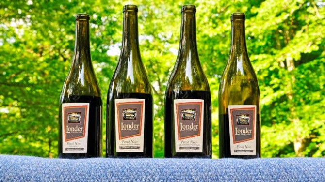 londer-vineyards-pinot-noir