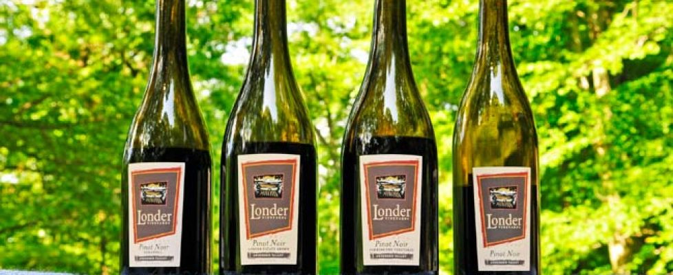 londer-vineyards-pinot-noir