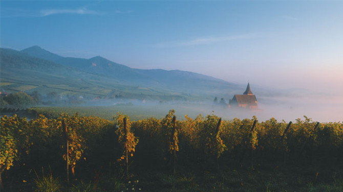 alsace-wine-country